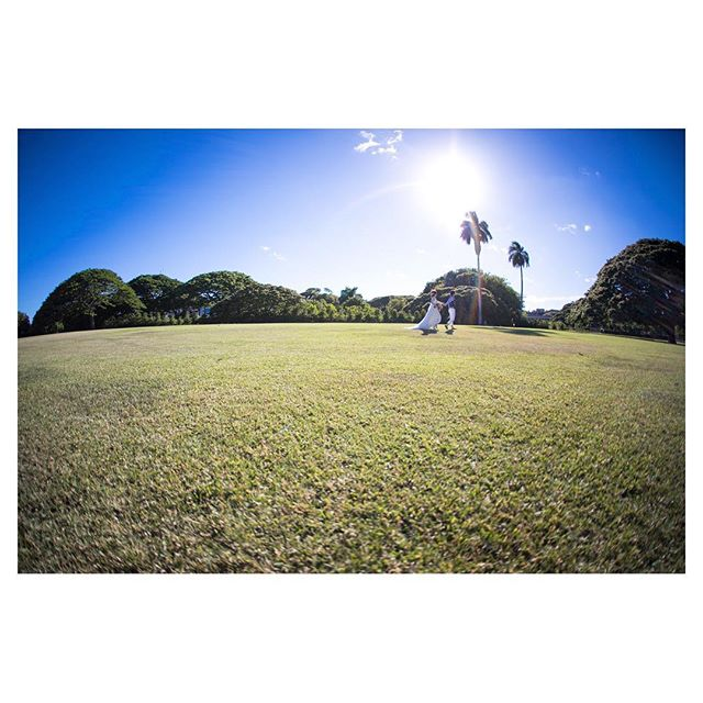 .モコモコしたフォルムが可愛いモンキーポッド🌳🌳🌳@moanaluagardenswedding ..Photo by @ayastomikawa Produced by @la.chic.weddings