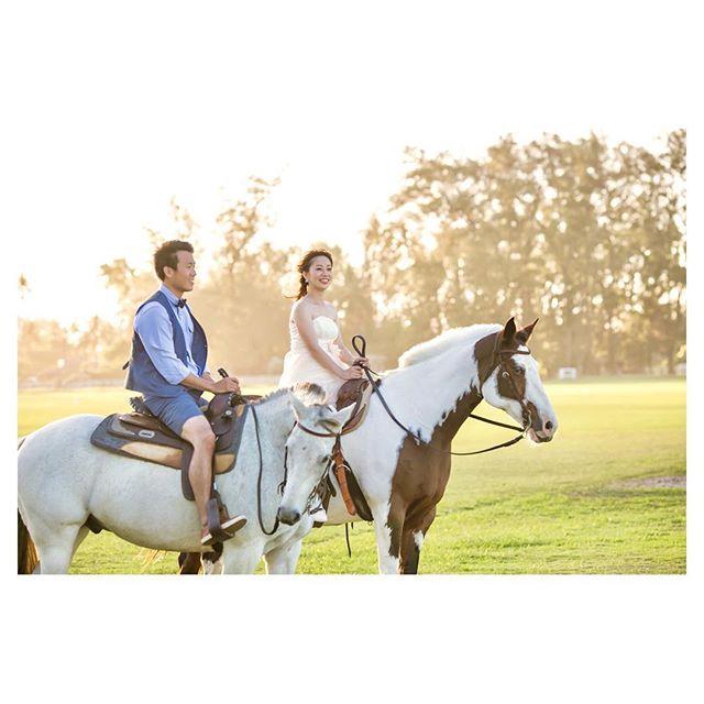 .花嫁様からのリクエスト...夕暮れ時の乗馬Shootingお手伝いしてくれたのは、白馬ちゃんと白×茶のブチちゃん♡..Photo @mak_ishii @ayastomikawa @fotogenica_hawaii Produced by @la.chic.weddings