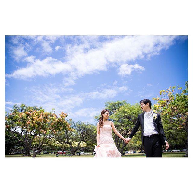 .青い空に流れる雲。緑の芝生にキラキラのシャワーツリー日本にはない素晴らしい景色の数々をフォトツアーでしっかり残そう◡̈︎Photo @ayastomikawa ..決まったプランのご用意はありません。お二人にあわせたフォトツアーをご提案致します。お問合せはメール又は🖥ホームページより是非お気軽にご相談ください。*DMでのお問合せはご遠慮いただいております。ご了承ください。