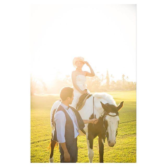 .夕暮れ時...淡い光に包まれる素敵な時間️可愛いお馬さんと一緒の撮影も大自然溢れるハワイならでは︎..Photo @mak_ishii @ayastomikawa @fotogenica_hawaii Produced by @la.chic.weddings
