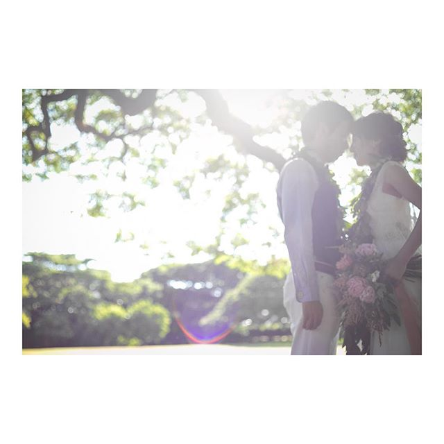 .木漏れ日が煌めく素敵な時間⋆*@moanaluagardenswedding は夕方挙式もおすすめです..Photo @ayastomikawa @fotogenica_hawaiiProduced by @la.chic.weddings