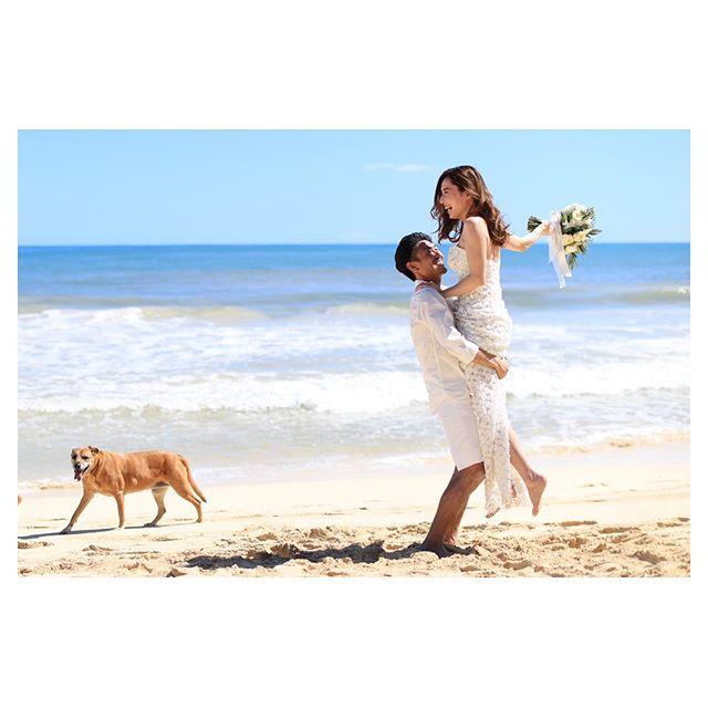 .楽しい空気を嗅ぎつけて、可愛いお邪魔もフレームイン🐕.. @makoozaki Produced by @la.chic.weddings