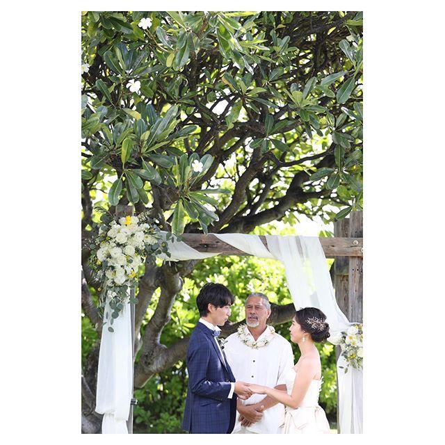 .ハレプナカイのシンボルツリープルメリアの木の麓で永遠の誓い...♡The Hawaiiな素敵ロケーション.. @makoozaki  @bilino_atsuko Produced by @la.chic.weddings