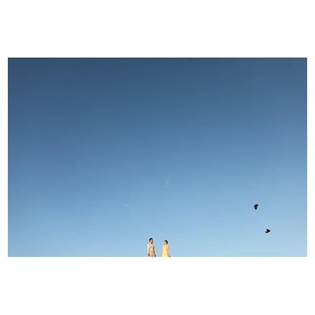 .真っ青な空に浮かぶふたりと🕊.. @makoozaki Produced by @la.chic.weddings